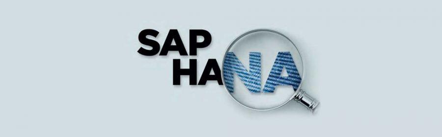 Fonctionnalités et avantages de la plateforme SAP HANA
