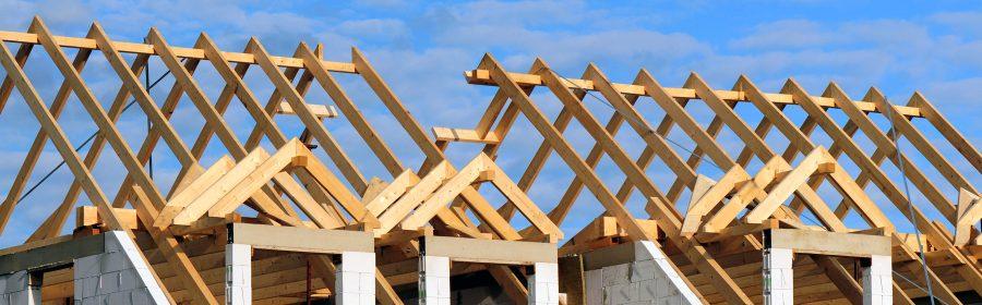 Quel sont les types de litiges les plus courants en matière de construction immobilière ?