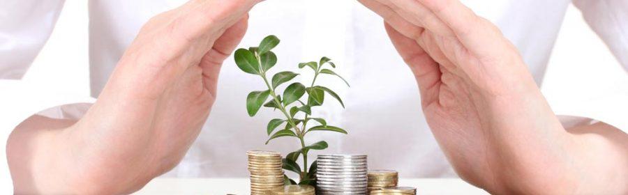 conjuguer défiscalisation et investissement